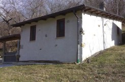 rif 2011