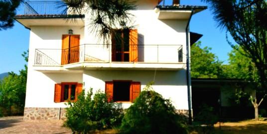 Castelfranco: Villa indipendente (Rif.2116)