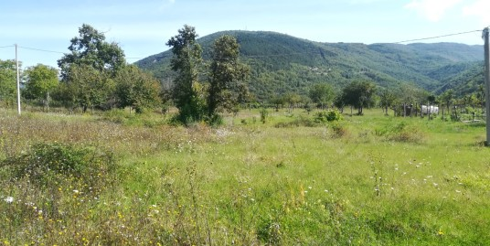 Vazia-Loc.Cerreto:Terreno agricolo con magazzino(Rif.2119)