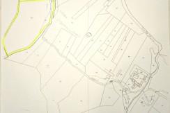 estratto di mappa bosco