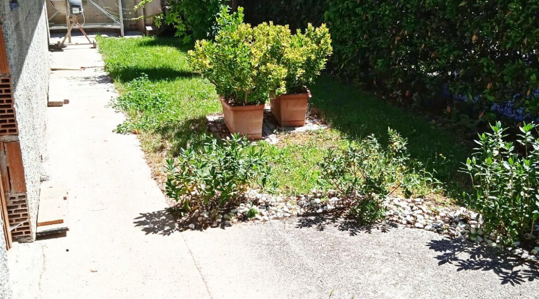 giardino 2 (2)